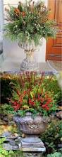Christmas Decorating Ideas Outdoor Planters Pictures 24 Colorful Outdoor Planters For Winter And Christmas Decorations