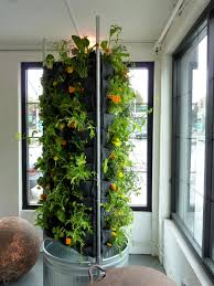 indoor vertical flower vegetable garden with recycled plastic