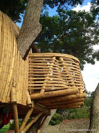 Bamboo Home Design Pictures by Bamboo Treehouse In Colombia U2014 Guadua Bamboo