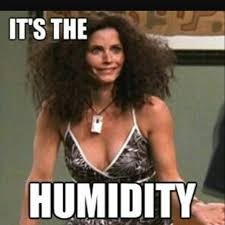 Frizzy Hair Meme - mulpix my hair currently hair frizz humidity friends monica