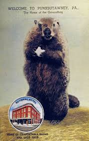 groundhog day cards 15 best groundhog day advertisments images on ground hog