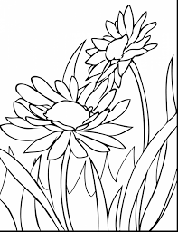 awesome hibiscus spring flower coloring pages with spring flowers