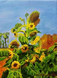 sunflowers for sale daily paintworks sad sunflowers original for sale
