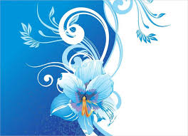 white and blue flowers 20 blue flower backgrounds wallpapers freecreatives