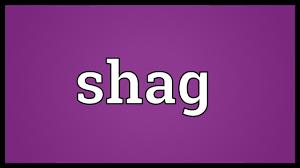 shag meaning youtube