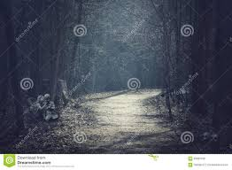 Halloween Landscape Dark Forest With Empty Road Stock Photo