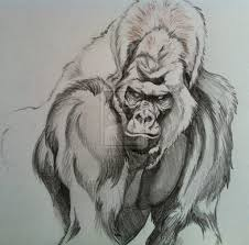 download free silverback gorilla tattoos images u0026 pictures findpik