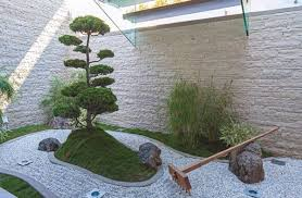 japanese rock garden plants