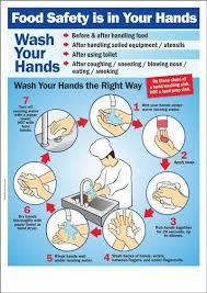 food safety is in your hands hygiene keime u0026 schädlinge