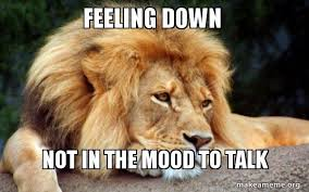 Feeling Down Meme - feeling down not in the mood to talk confession lion make a meme