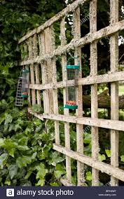 bird feeders in domestic garden hanging from wooden trellis stock