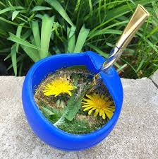 edible native plants pacific northwest pacific northwest wild edibles and foraging home facebook