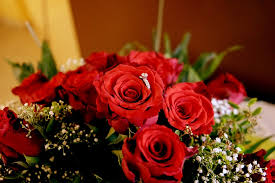 Bouquet Of Roses Free Photo Roses Bouquet Of Roses Flower Free Image On