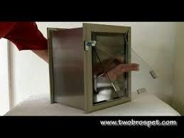 installing pet door in glass door hale pet door hale wall mounted pet door youtube