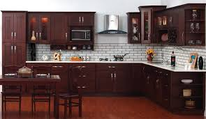 Cinnamon Shaker Kitchen Cabinets by Talk To A Pro About Stock Kitchen Cabinets U0026 Remodeling Get A