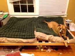 Ll Bean Dog Bed Bedroom Lovable More Sleepy Puppies Bean Dog Bed Washing