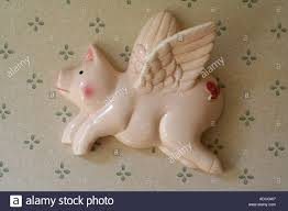 flying pig wall ornament pigs might fly stock photo royalty free