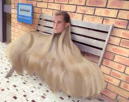 afghan hound owner reviews psbattle this afghan hound photoshopbattles