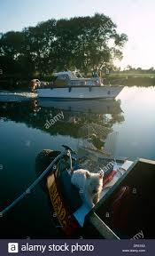 thames river boats dogs a motor launch passes a narrow boat with parrot and dog in the early