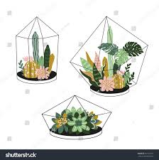 hand drawn contained tropical house plants stock vector 551337781