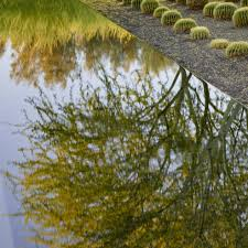 visit the gardens sunnylands