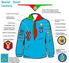 6th torbay britannia sea scouts rn29 beaver uniform and badges