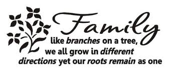 family like branches on a tree vinyl wall lettering