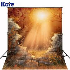 halloween money background online buy wholesale collapsible background photography from china