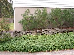 landscape design phoenix landscaping design by lee landscaping