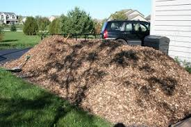 sheet mulch one straw be the change