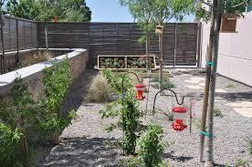 texas native plants landscaping el paso community college celebrate urban birds