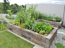 Vegetable Garden Bed Design by Amazing Small Vegetable Garden Plan Best 25 Vegetable Garden