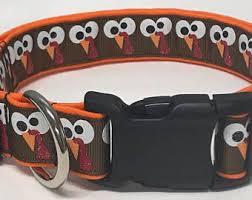 collar tucky the turkey thanksgiving thanksgiving