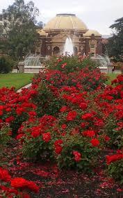 best 25 exposition park los angeles ideas on pinterest los