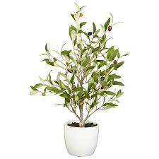 small faux olive tree in white planter reviews joss