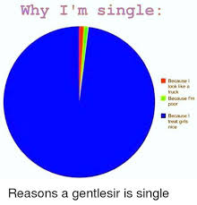 Single Girls Meme - why i m single because look like a truck because i m poor because i