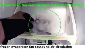 refrigerator fan noise solved rf217 refigergator makes a noise because fixya