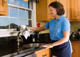 cleaning kitchen faucet domestic cleaning cheerful polishing kitchen sink faucet