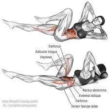 bicycle crunch exercise instructions and video weight training guide