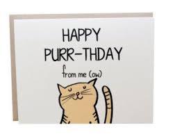 Cat Birthday Cards 25 Legjobb ötlet A Pinteresten A Következővel Kapcsolatban Cat