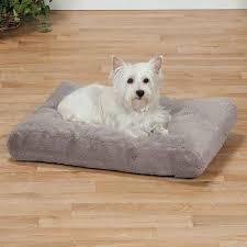 Clamshell Dog Bed by Beautiful Dog Bed Burrow 129 Dog Burrow Bed Uk Dachshunds Love