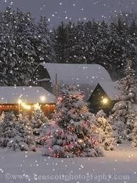 91 best winter wonder land images on pinterest winter snow
