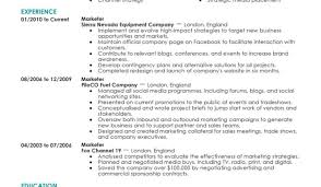 full resume format download resume bewitch best resume format government jobs lovable good