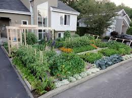 outdoor and patio unique backyard vegetable garden for small