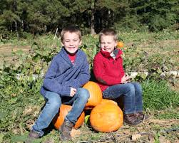 Chesterfield Pumpkin Patch 2015 by Travel Archives Jvkom Chronicles