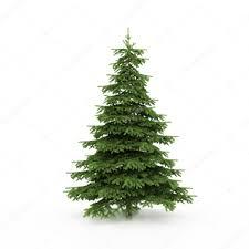 the christmas tree ready to decorate u2014 stock photo ericmilos