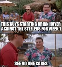 Brian Hoyer Memes - see nobody cares meme imgflip