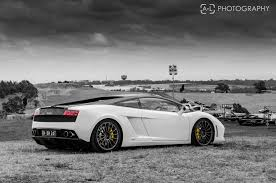 white lamborghini gallardo lamborghini gallardo lp560 4 white lamborghini white black and