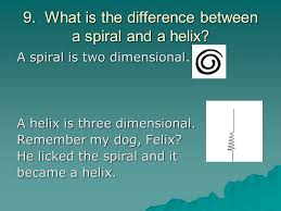 what is the differnece between a spiral and regular perm answers to the understanding test ppt download