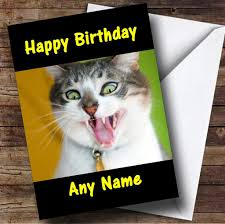 crazy funny cat personalised birthday card the card zoo